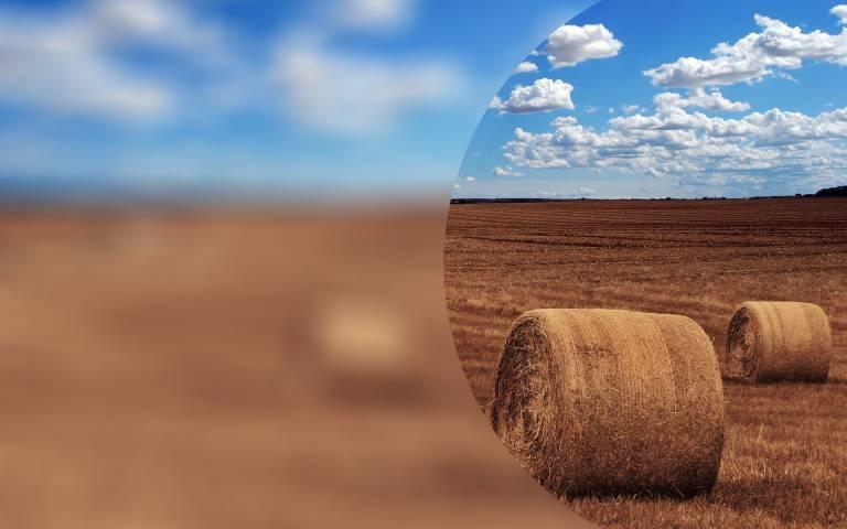 Hay bales in field blur