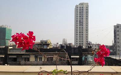 Cityscape with flower