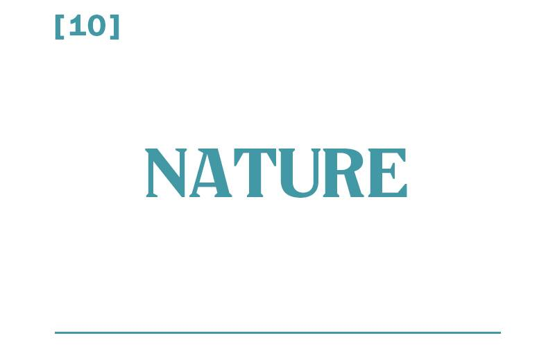 White background, teal text reading: [10] Nature