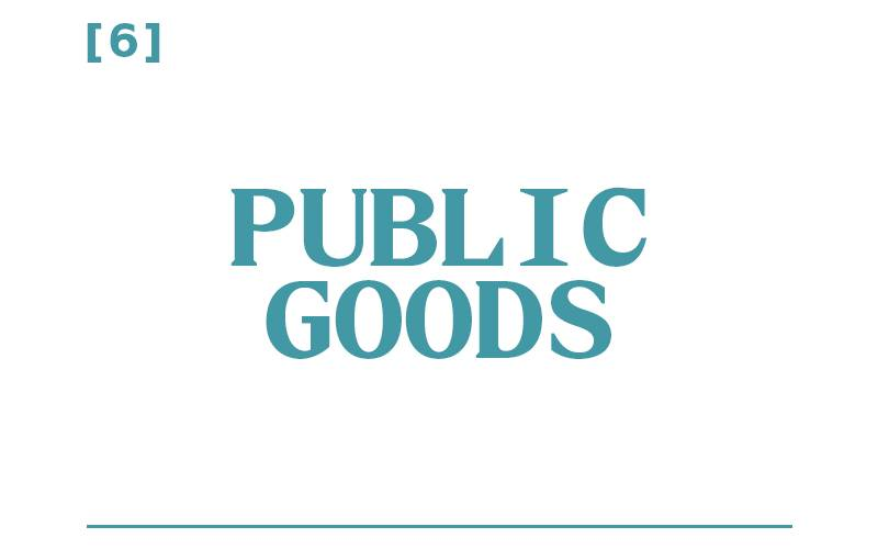White background, teal text reading: [6] Public Goods