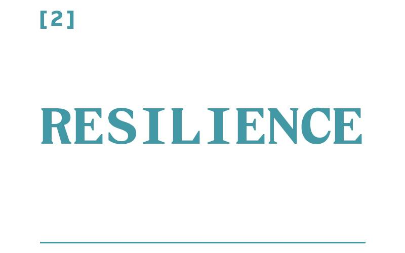 White background, teal text reading: [2] Resilience