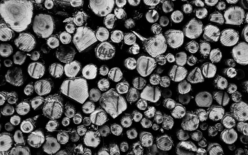 Wirewood logs black and white