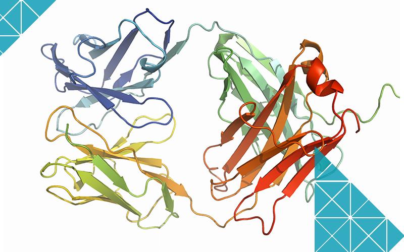 Antibody-Targeted-Therapies-MBI