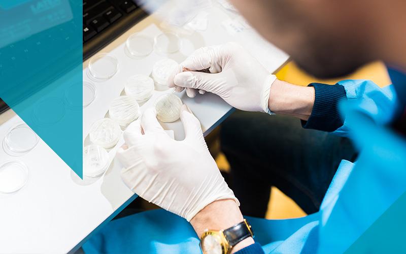 Biochemical engineering hand preparing freeze dryer