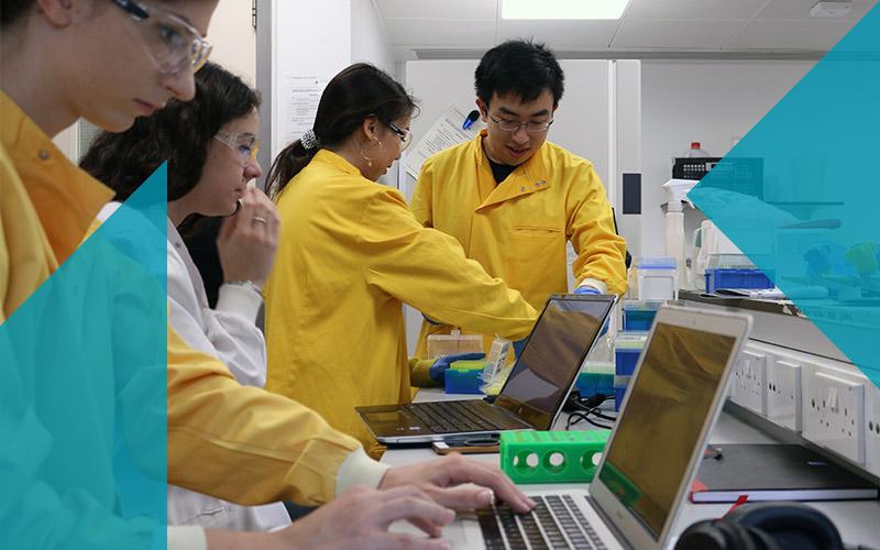Biochemical Engineering iGEM students in laboratory