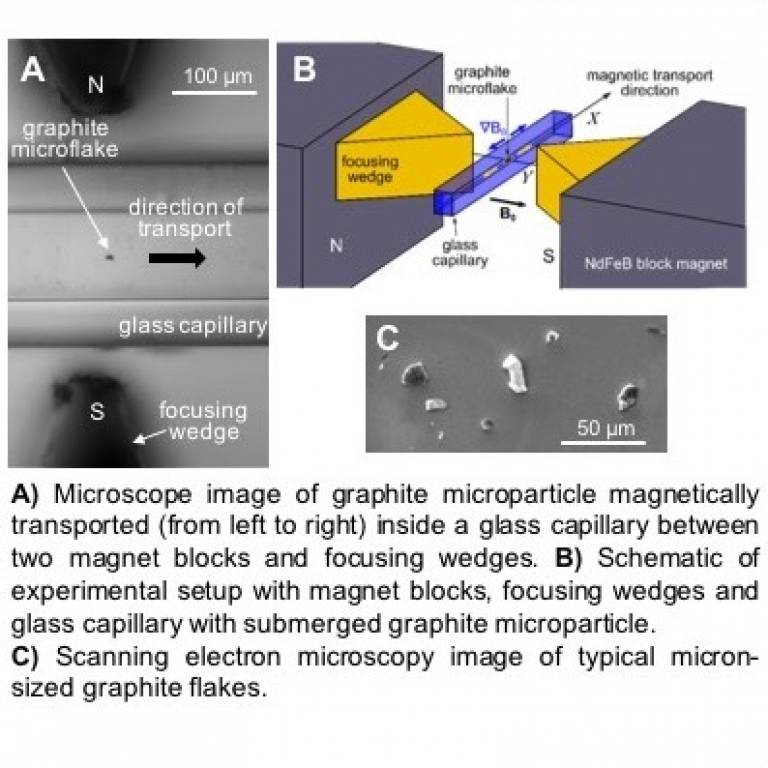 Microscope image of graphite microparticle magnetically transported (from left to right) inside a glass capillary between two magnet blocks and focusing wedges