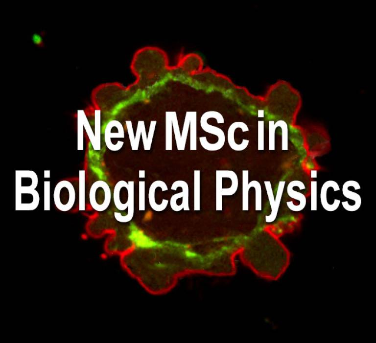 MSc Biological Physics