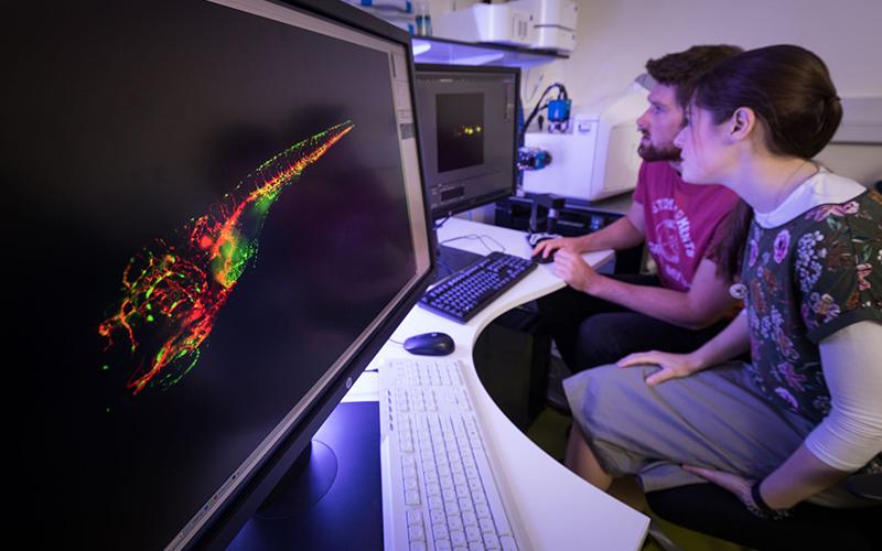 biosciences_imaging