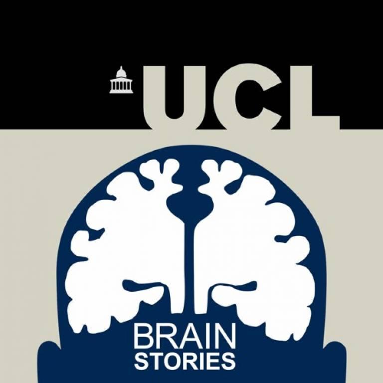 Image of Brain Stories logo