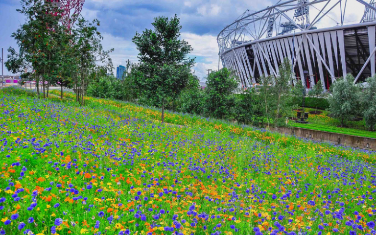 floral_olympic_park_1