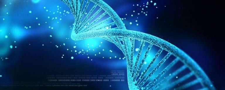 UCL Genetics Institute