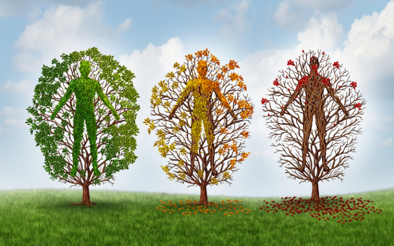 3 colourful trees displaying healthy living attributes