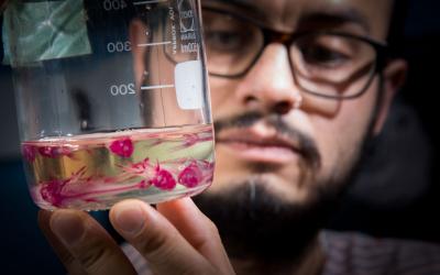 Man examines contents of glass jar