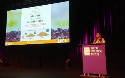 abbie_chapman_-_presenting_at_the_british_ecological_society_-_policy_image