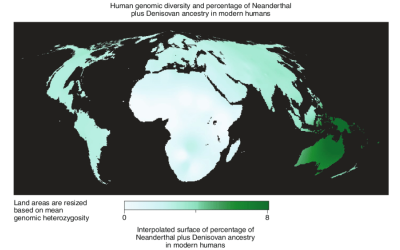 cartogram-with-resized-land-area-representing-modern-human-genetic-diversity-and-colour