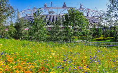 floral_olympic_park_3
