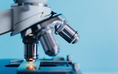 microscope up close