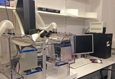 SPE1 Microscope