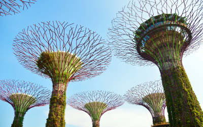 stock_image_gardens_by_the_bay_singapore