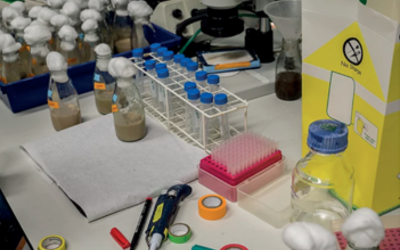 table_in_lab_filled_with_items