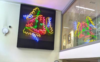 bright image of fish light in the IHA