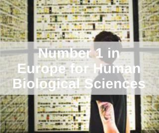 Human Biological Sciences