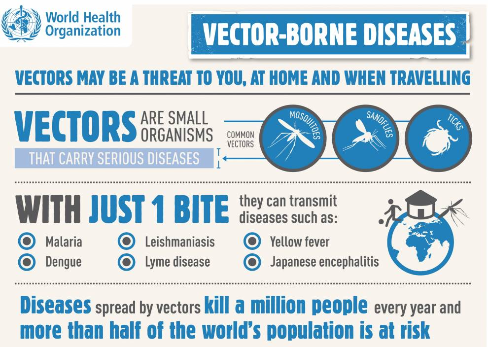 who_whd_2014infographic_2_002.jpg