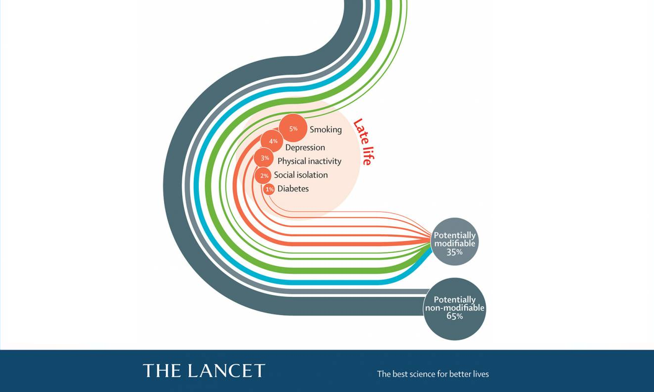Part of the Lancet Commission's dementia risk factors infographic