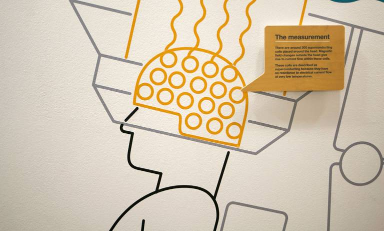 Wellcome Trust Neuroimaging Centre - fMRI wall graphic