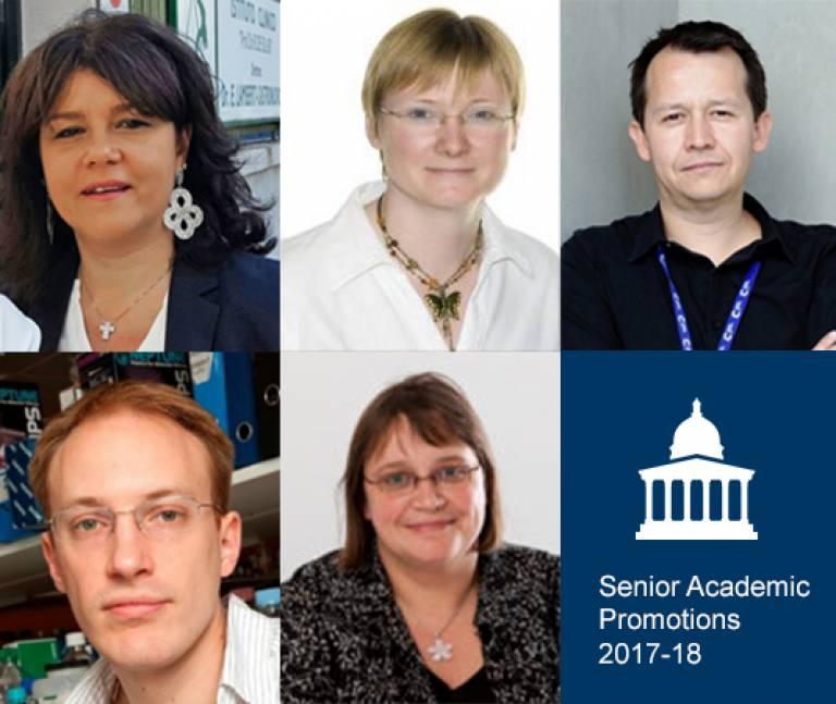 Cancer Institute Senior Academic Promotions