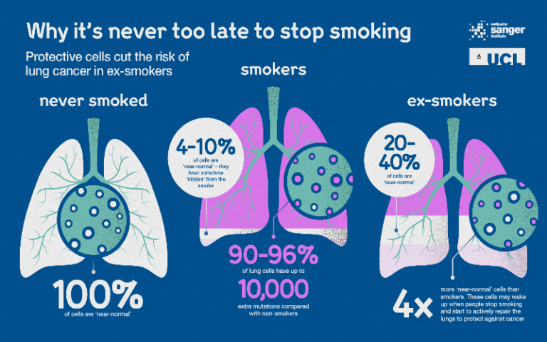 Why it's never too late to stop smoking infographic