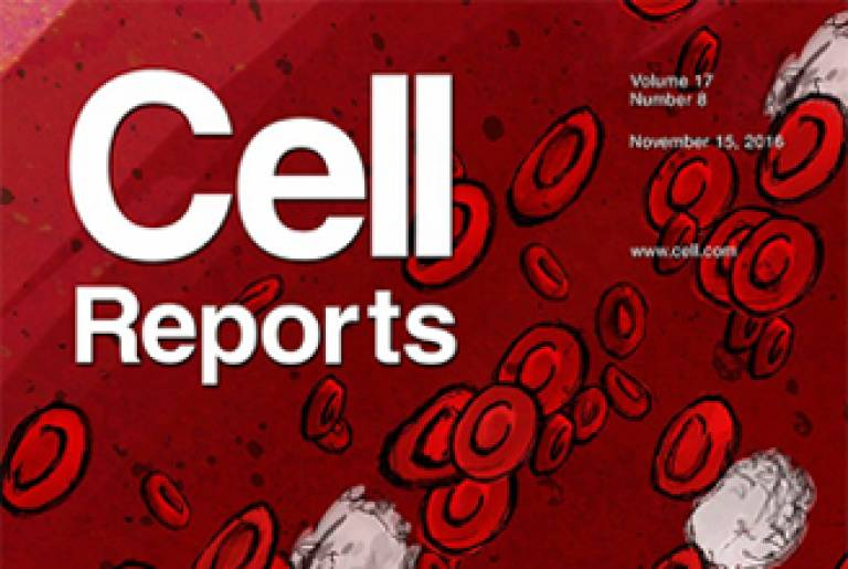 Cell reports cover…