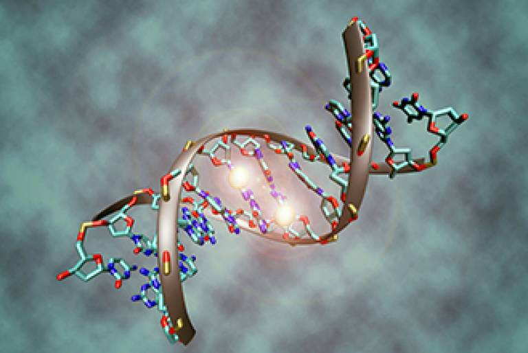 DNA methylation…