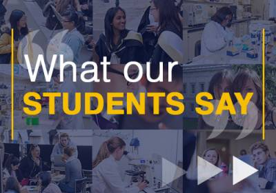 What our students say…