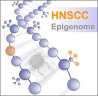 HNSCC logo…