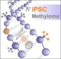 ipsc methylome logo…