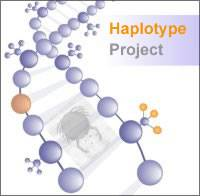 Haplotype logo…