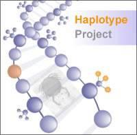 Haplotype logo…