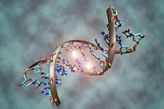 DNA methylation…