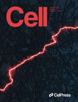 Cell Press Cover Feb 2021