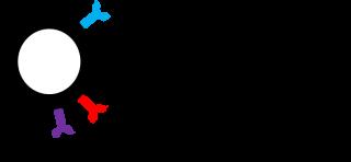 Quezada Lab Logo