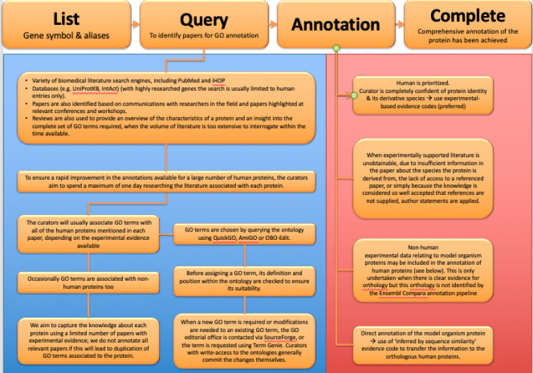 Flowchart showing annotation pipeline