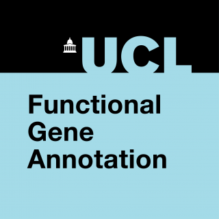 Functional Gene Annotation