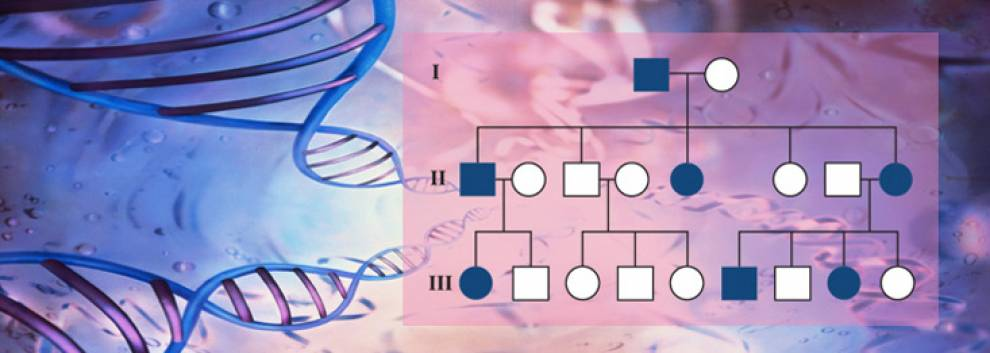 cardiovascular-genetics.jpg