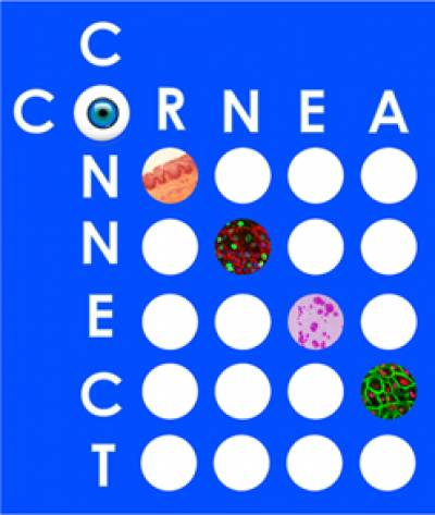 Cornea Connect Logo…