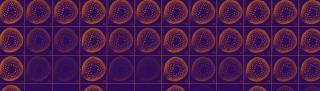 MRI diffusion in asparagus