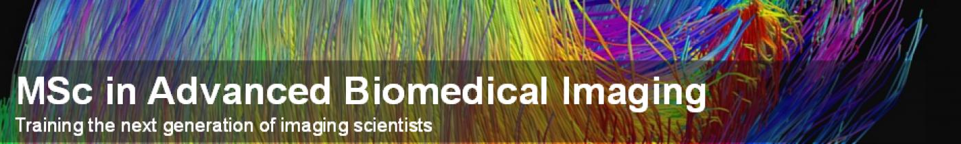 Advanced Biomedical Imaging MSc