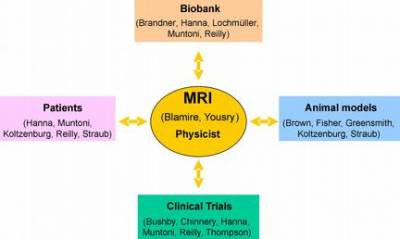 MRI Team Diagram