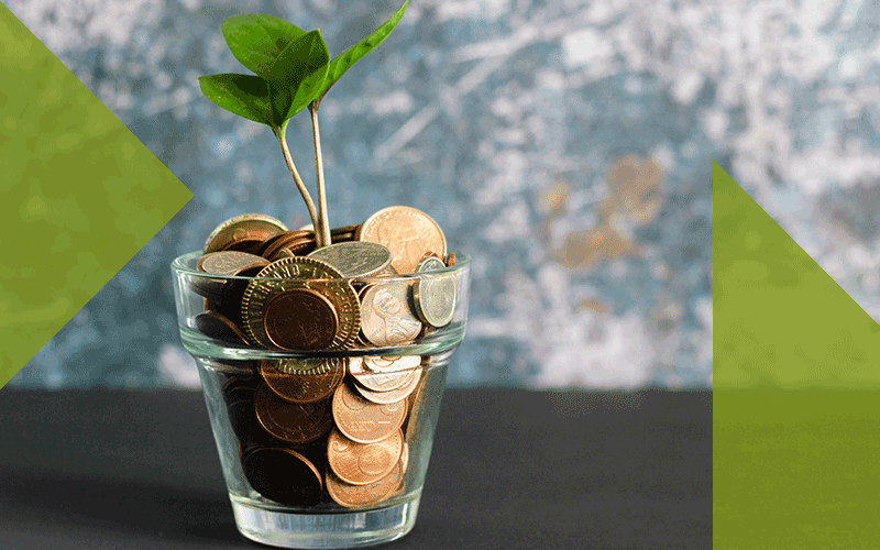 Image of plant growing out of a jar of coins