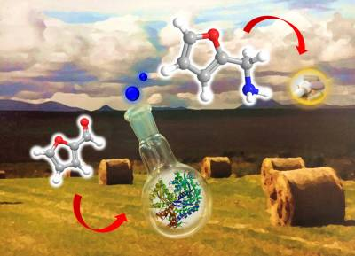 Chemical Sustainability: Renewables Research Theme